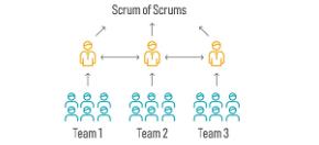 seven-teams